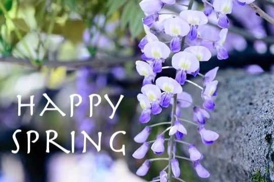 happy spring 2018